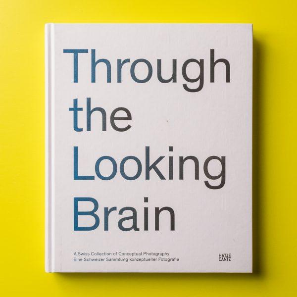 Through the Looking Brain