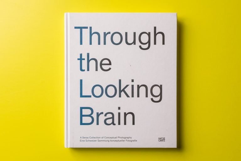 Through the Looking Brain