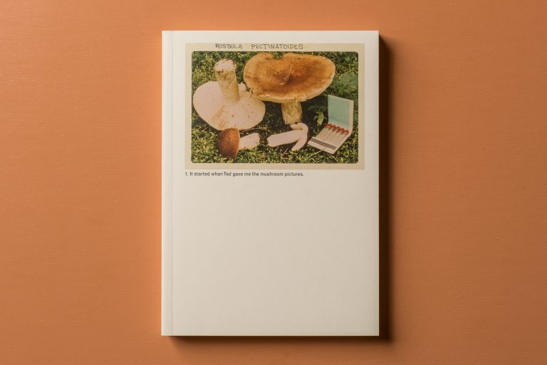 The Mushroom Collector